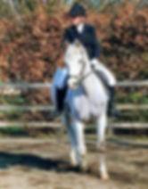 binley_silver_spark.jpg
