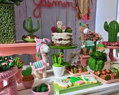 decoração festa lhamas (11).jpeg