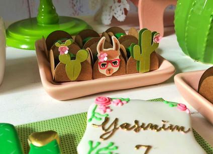 decoração festa lhamas (5).jpeg