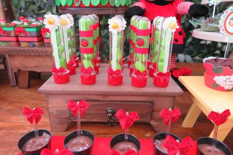 decoração joaninhas (7).JPG
