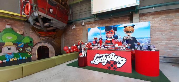 decoração festa ladybug (22).jpg