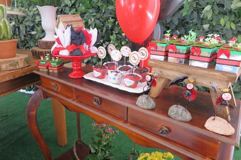 decoração joaninhas (9).JPG