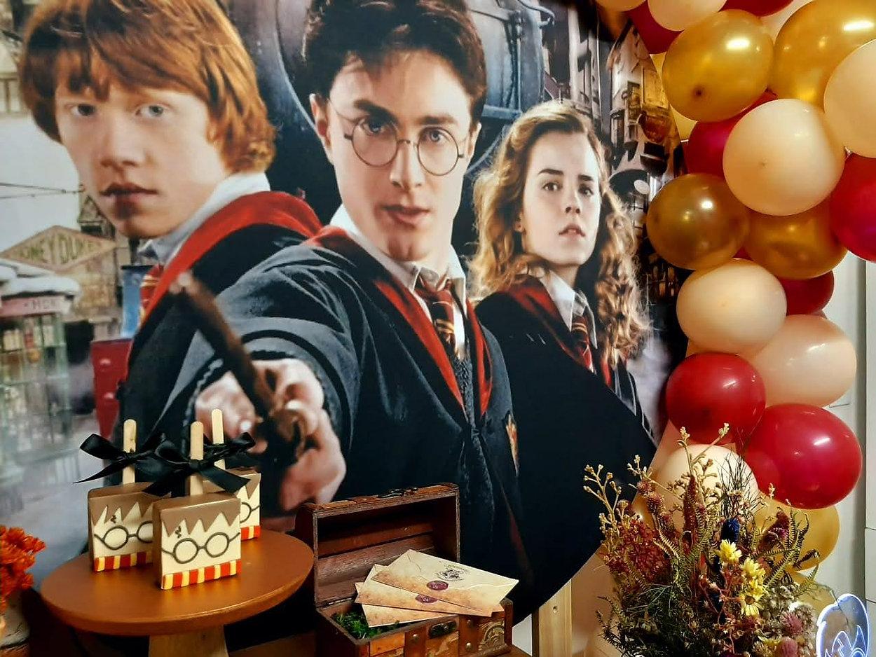 festa harry potter (20).jpg