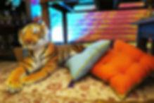 decoracao jasmine e aladdin (14).JPG