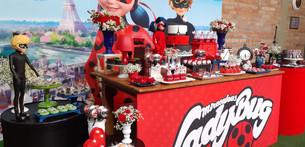 decoração festa ladybug (7).jpg