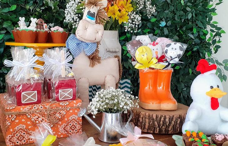 decoração-festa- fazenda (10).jpg