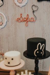decoração festa coelhinha miffy (17).jpg