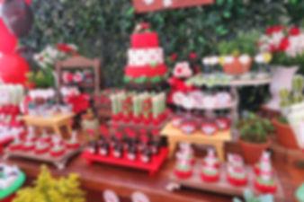 decoração joaninhas (15).JPG