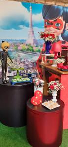 decoração festa ladybug (8).jpg