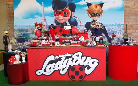 decoração festa ladybug (11).jpg