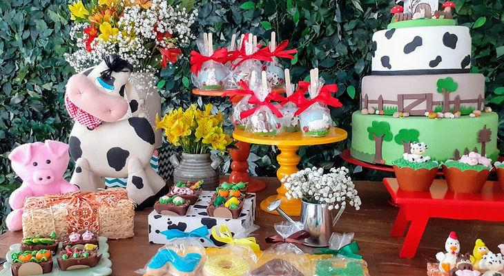 decoração-festa- fazenda (8).jpg