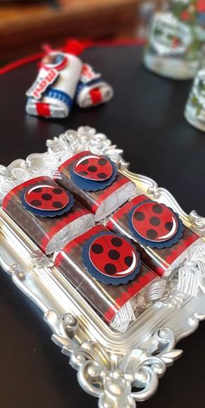 decoração festa ladybug (29).jpg