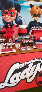 decoração festa ladybug (13).jpg