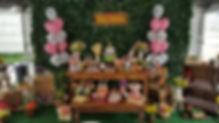 festa fazendinha menina (22).jpg