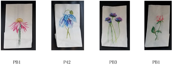 bags01.png