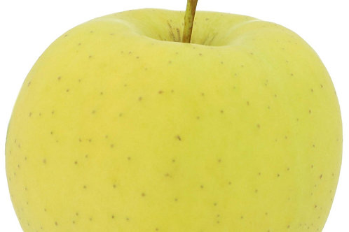 Dwarf Stayman Winesap/Yellow Delicious - 2 tree packet
