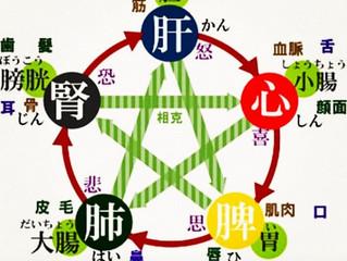 中医学におけるダイエット