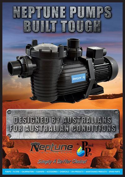 Neptune Swimming Pool Pump
