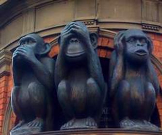 Monkeys hear, see, speak no evil.jpg