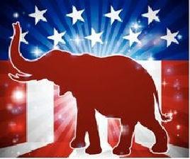 elephant & flag2.jpg