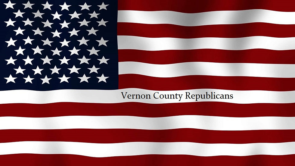 flag & vcrc website cover page - constan