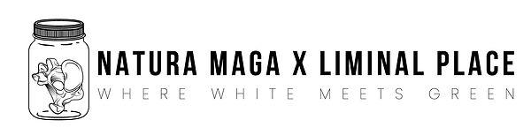 NMXLP_BANNER_WHITEBG.jpg
