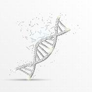 DNA_MedRes.png