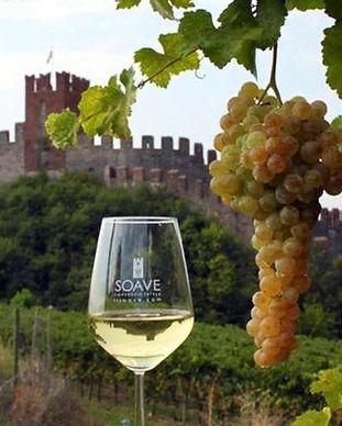 vino-etna.jpg