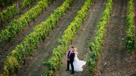 Sicilian Wedding Lab