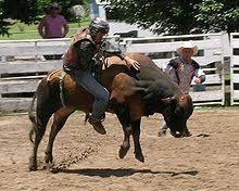 Bull Ride 2019.jpg