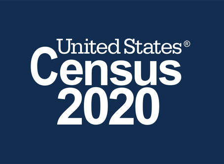 2020 Census Infogram