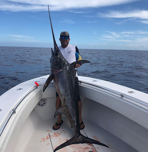 Swordfish Huge 2.jpg