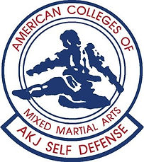 American Colleges of Mixed Martial Arts