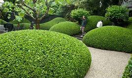 Villa Monte Amersfoort wonen in het groen