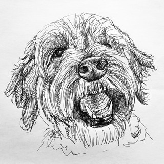 Portrait of Cambie