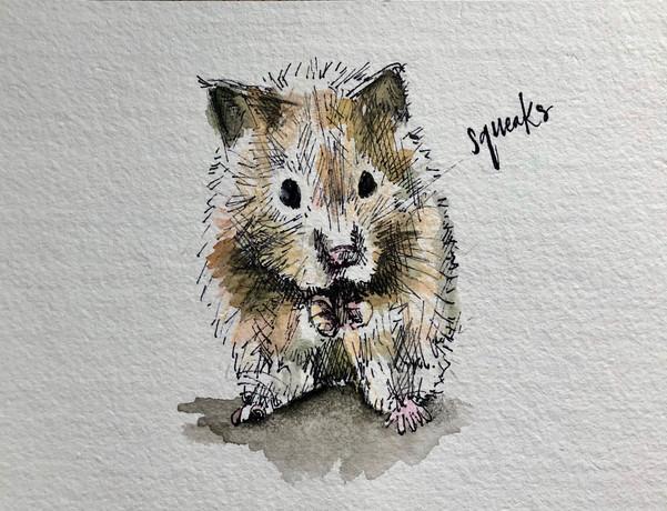 Colour Portrait of Sqeaks