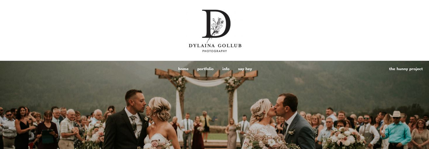 Dylaina Gollub Website with logo in use