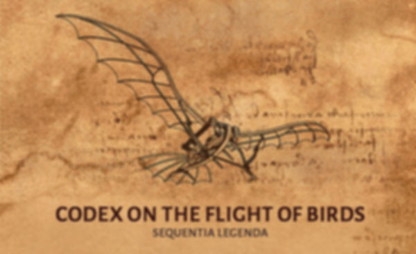 CODEX-large.jpg