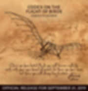 Codex on th flight of birds