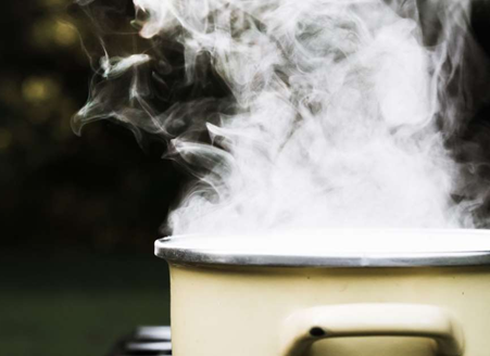 IMPROVING THE HEALTH OF YOUR HOME WITH STEAM!