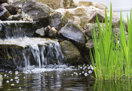 CREATE A MINI ESCAPE WITH A WATER FEATURE