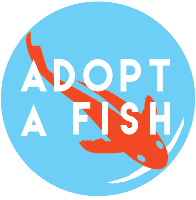AdoptAFish_Button