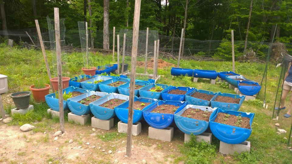 greenhouse tech.jpg