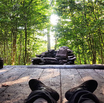 Forest Bathing & Nature Therapy