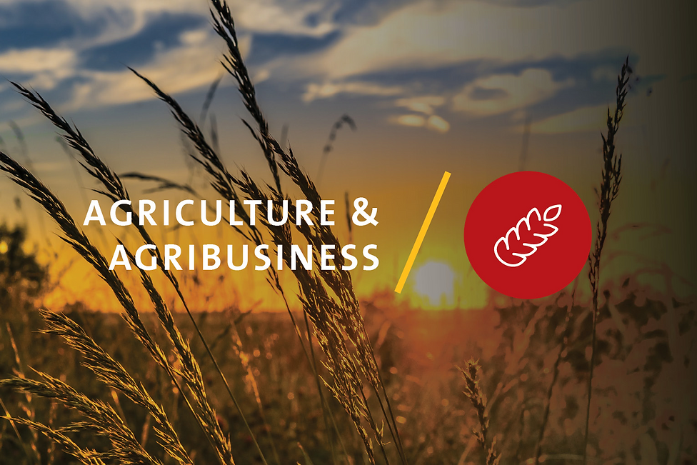 homepage_agriculture__60.png