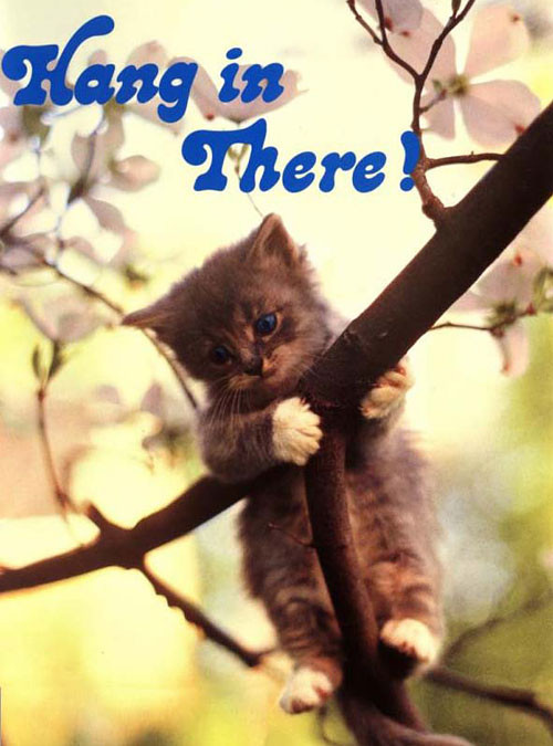 Hang in there Kitten poster