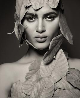 Model : Raha