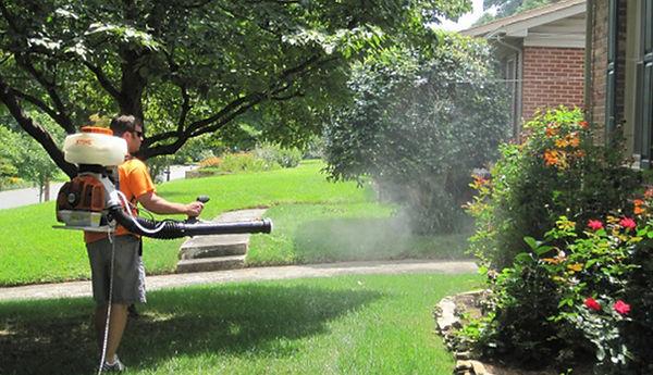 Fog Off Garden Treament