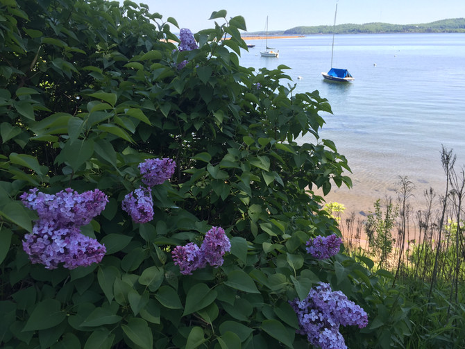 June is open! Book now for a fun vacation in the Upper Peninsula.