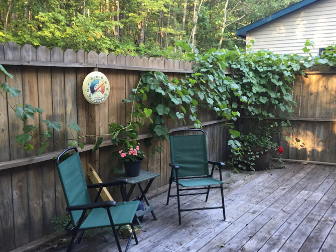 Updates on the Vacation Rental Front